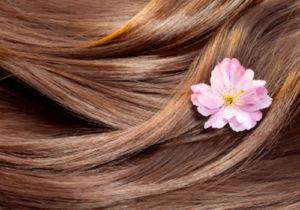 على الشعر 300x210 - تنعيم الشعر بوصفات منزلية بسيطة
