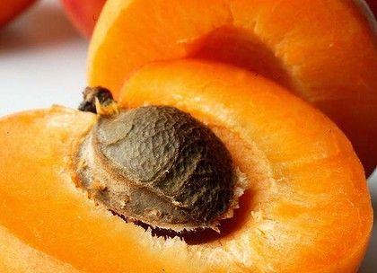 3beef1bcc84ae75892434c01f0186a49 - Voici comment faire pousser un abricotier à partir d'un noyau