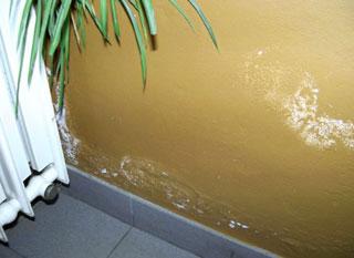 bien etre 12 astuces contre lhumidite a la maison2 - Solutions naturelles contre l'humidité des murs