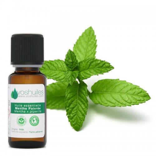 huile essentielle de menthe poivree - Preparation and use of peppermint oil