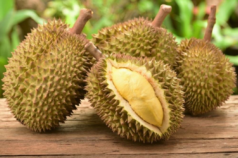 Bienfaits du durian sur la santé valeur nutritive - Tout savoir sur le durian le roi des fruits