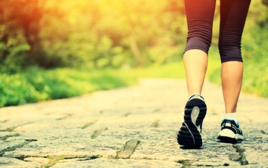 méditer en marchant 542x340 - 5 دقائق المشي ممارسة التأمل يمكنك القيام به في أي وقت