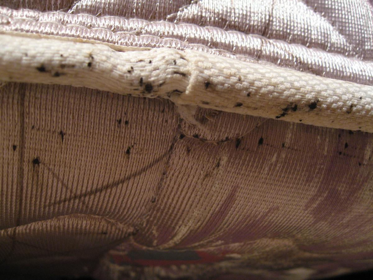 8 mesures à prendre le plus rapidement possible pour éliminer les Punaises du lit - 8 mesures à prendre le plus rapidement possible pour éliminer les Punaises du lit