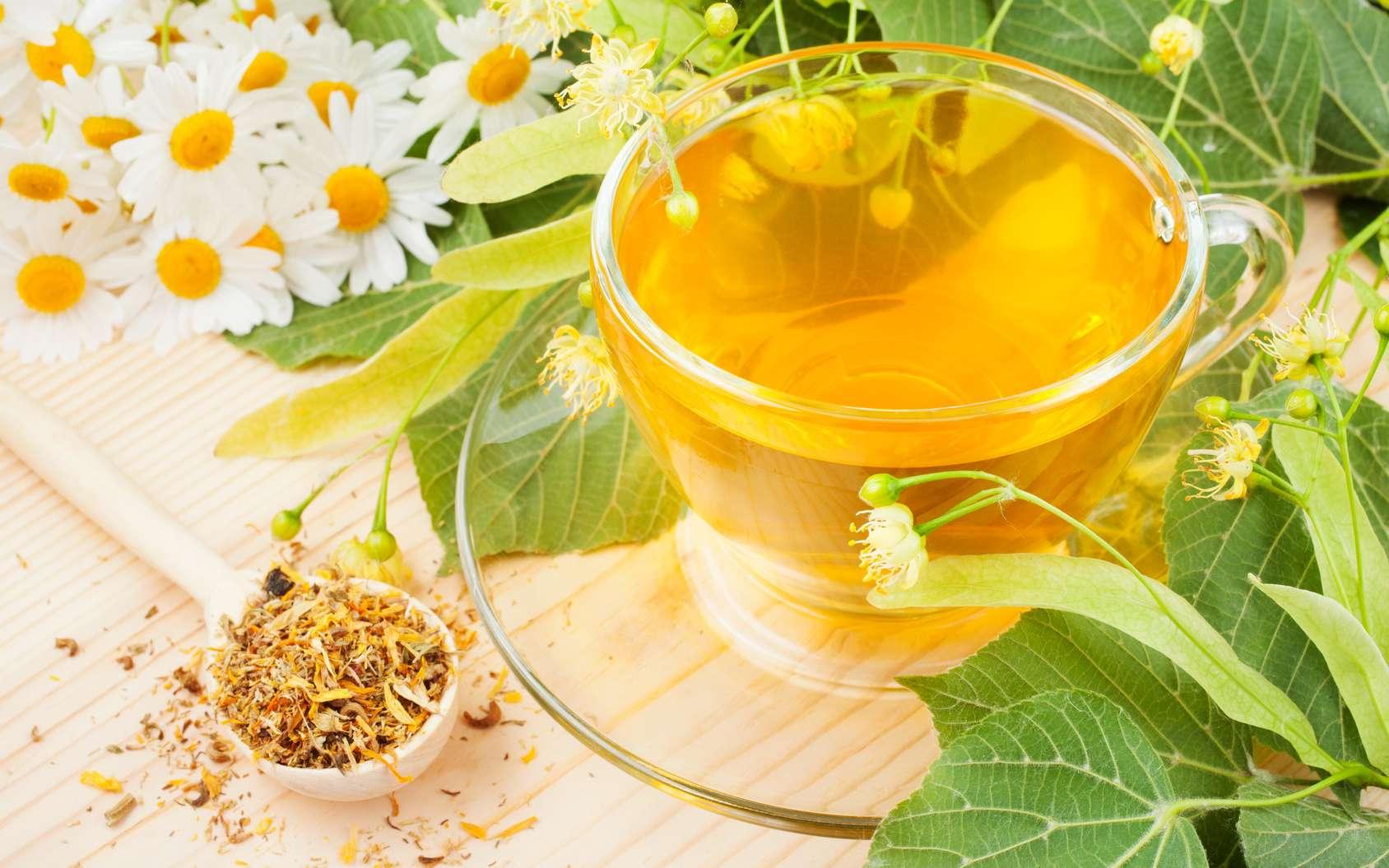 Les meilleurs bienfaits santé du thé à la camomille - Les meilleurs bienfaits santé du thé à la camomille