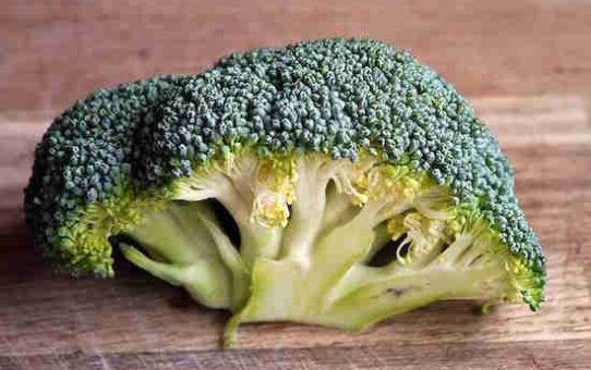 20 Aliments a ZERO Calorie Pour Vous Aider a Perdre du Poids. 542x340 - 20 Aliments à ZÉRO Calorie Pour Vous Aider à Perdre du Poids.